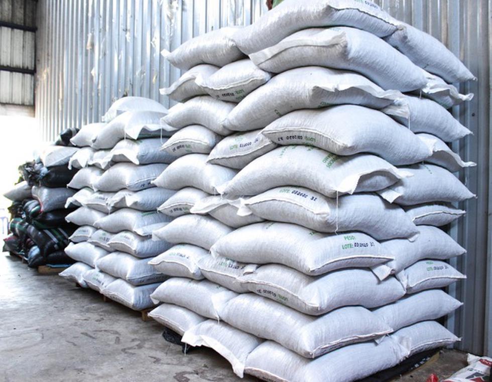 Madre de Dios: empresa de agricultores exporta 104 toneladas de cacao orgánico a Italia. (Foto: Manuel Calloquispe)
