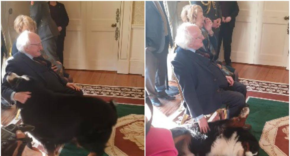 El mandatario no se resistió y cumplió el deseo de su mascota, en una curiosa escena que se volvió viral en redes sociales. (Foto: Captura)