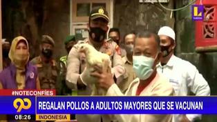 Coronavirus en Indonesia: Regalan pollos a los adultos que se vacunen