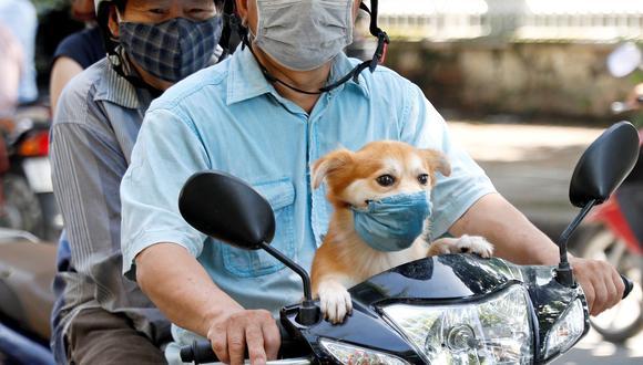 (Foto: Luong Thai Linh / EFE)