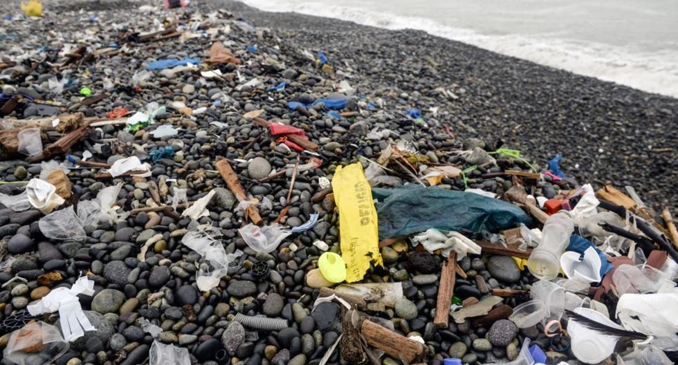 Gran cantidad de corresponsales escolares escogió escribir sobre el medio ambiente.  (Foto: Andina)