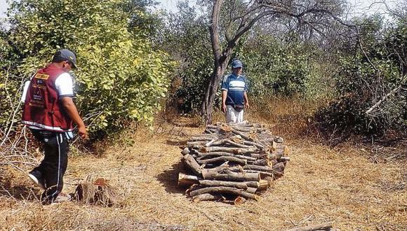 Lambayeque perdió en 10 años unas 70 mil hectáreas por tala