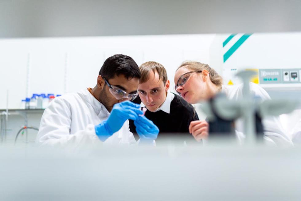 Científicos en Alemania han quedado sorprendidos ante tal hallazgo.| Foto: Pexels/Referencial