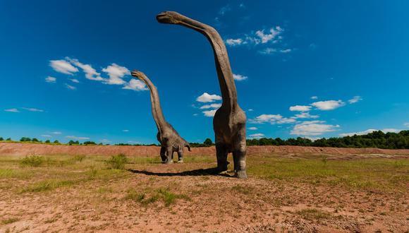 Los titanosaurios eran gigantescos animales herbívoros. (Imagen referencial: Pixabay)