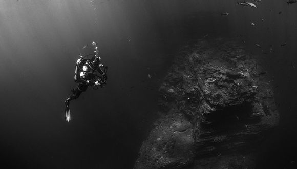 Kristian  Laine logró fotografiar una espectacular criatura en el fondo del mar en Australia.   Foto: Referencial/Pixabay
