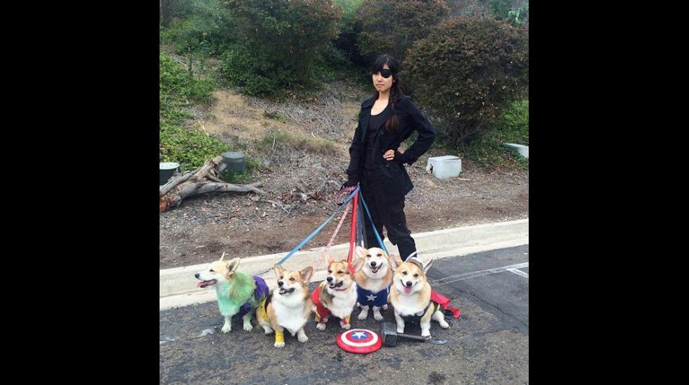 """FOTOS: """"Los vengadores"""" en versión canina, ¿no son adorables? - 1"""