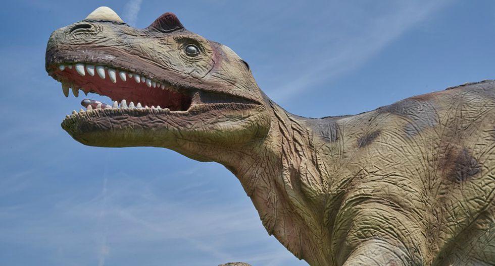 Durante tres décadas, una controversia ha agitado el mundo de la paleontología: ¿hubo una especie enana de tiranosaurios? (Foto: Referencial/Pixabay)