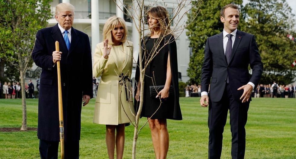 Por qué desapareció el árbol que Donald Trump y Emmanuel Macron plantaron en la Casa Blanca. (Reuters).