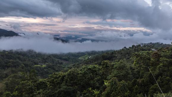 Bosques El Chaupe, Cunía y Chinchiquilla, tiene una extensión de 21,868.88 hectáreas. Su objetivo es conservar una muestra de la ecorregión Bosques Montanos de la Cordillera Real Oriental y su diversidad biológica. (Foto: Diego Pérez / SPDA)