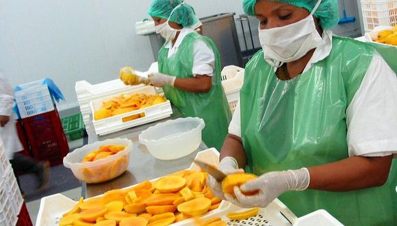 Las exportaciones de mango peruano alcanzaron los US$ 271 millones entre enero y noviembre del 2020. (Foto: Archivo GEC)