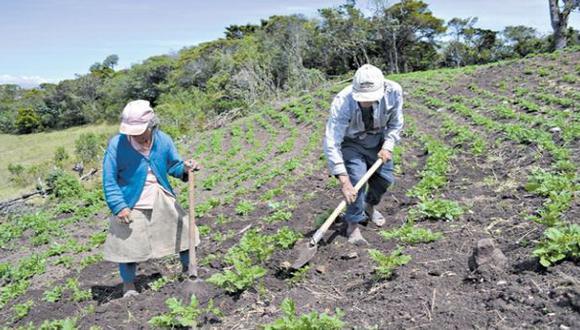 Bonos agrarios: ¿afectará al país la disputa por su pago?