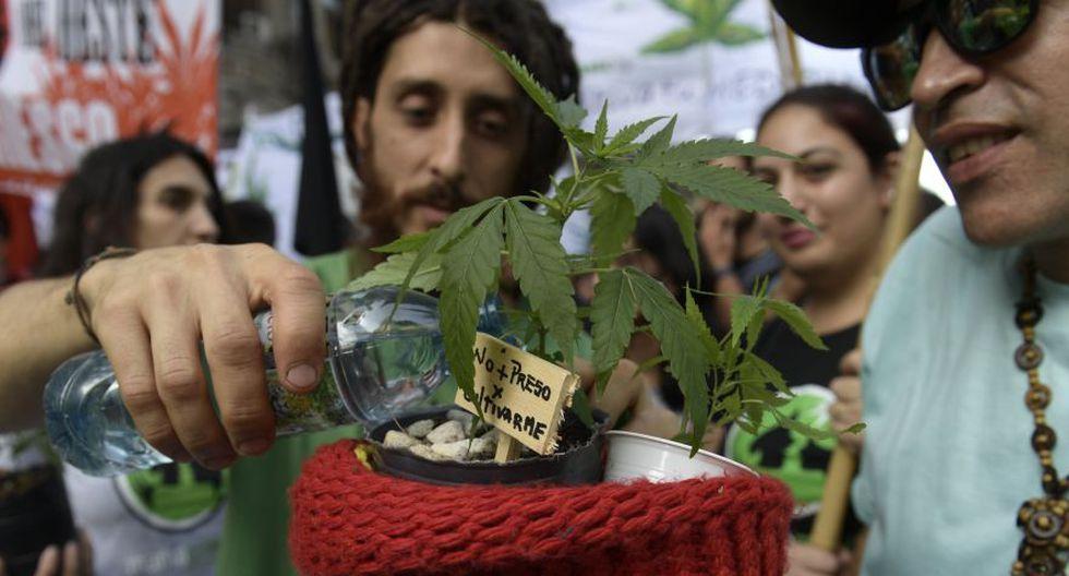 Miles en el mundo marchan por la marihuana [FOTOS] - 24