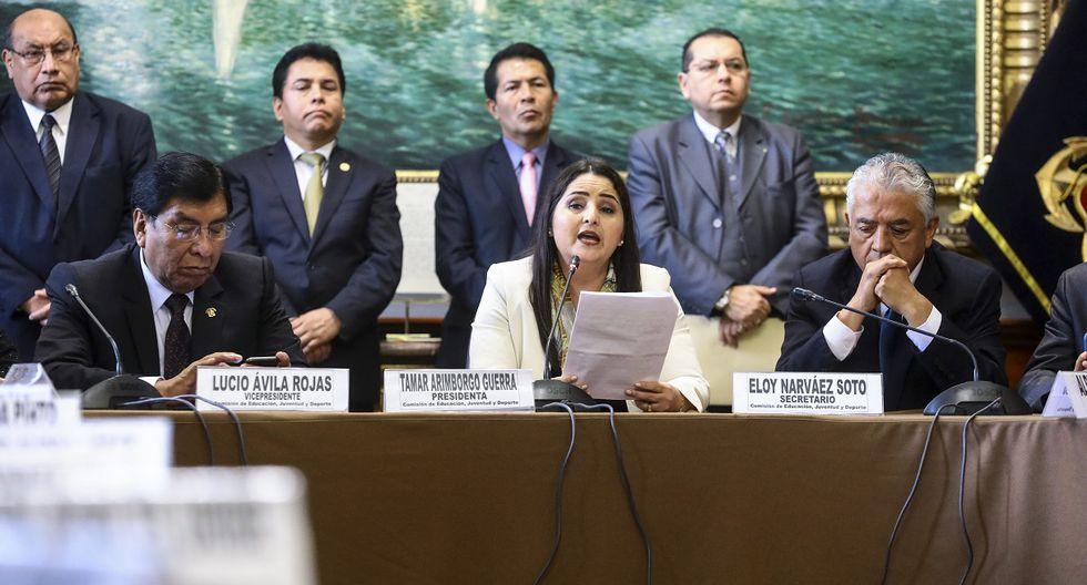 La congresista de Fuerza Popular, Tamar Arimborgo, en una sesión de la Comisión de Educación del Parlamento el pasado 19 de agosto. (Foto: Congreso).
