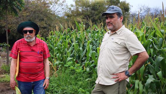 Los profesores de ingeniería forestal Ignacio Lombardi Indacochea (izquierda) y Juan Carlos Ocaña (derecha) sostienen que proyectos del plan maestro atentan contra 1.500 árboles del vivero forestal de la Universidad Agraria. (Foto: Hugo Curotto / GEC).