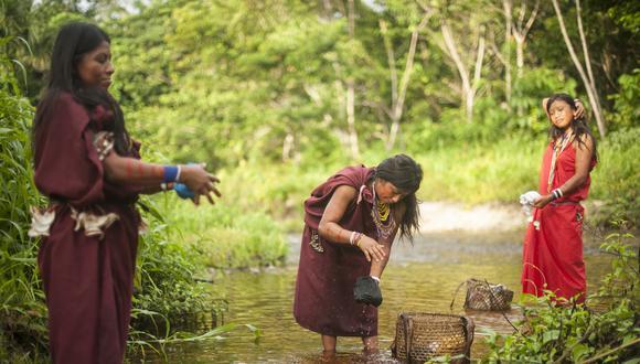 Proyecto Pastaza Morona en el DATEM de marañon en loreto.Profonanpe, es una empresa dedicada a captar fondos de inversion publica y privada para proyectos de coservacion ambiental.Actualmente desarrolla en proyecto pasataza morona que involucra a 7 comunidades de los pueblos indigenas