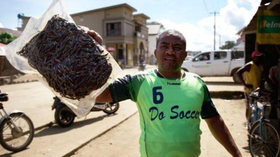 El gobierno ha tratado de evitar la práctica de empacar la vainilla al vacío. (Foto: BBC Mundo)