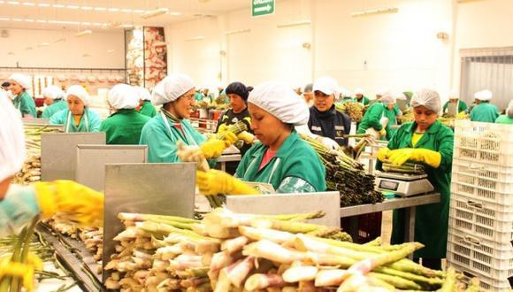 En el sector agropecuario, los productos con restricciones son: guisantes, espárragos, mangos frescos, gaseosa, entre otros. (Foto: Adex)