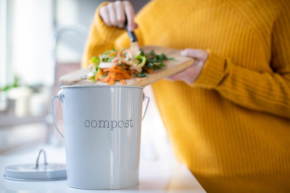 Al menos un 40% de tus desechos en casa son materia orgánica ¿Sabías que con eso puedes crear un abono nutritivo para tus plantas?  (Foto: Shutterstock)