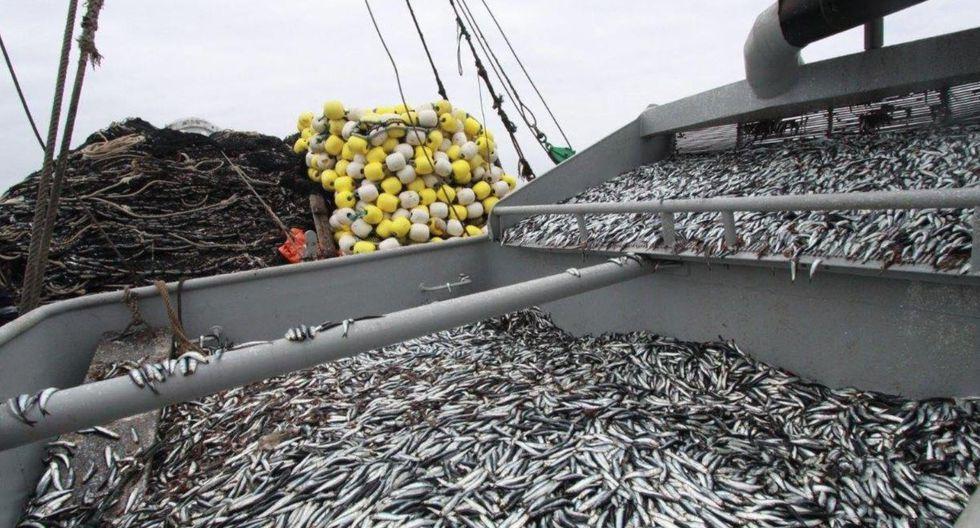 Según la SNI, el sector pesca exporta la quinta parte de lo que envía Chile. (Foto: GEC)