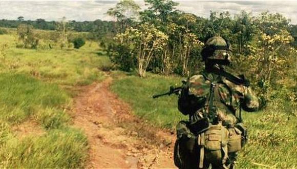 Colombia: Recuperan 280 mil hectáreas ocupadas por las FARC