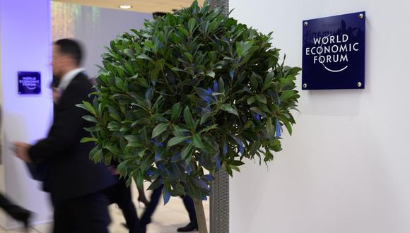 La idea de plantar árboles para compensar las emisiones de CO2 cada vez gana más fuerza en Davos. (Foto: AFP)