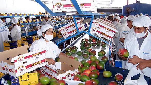 El Mincetur dijo que el Perú está camino a convertirse en uno de los diez exportadores frutícolas más importantes del mundo. (Foto: El Comercio)