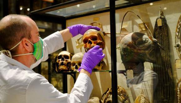"""La retirada de los cráneos humanos, muchos de ellos reducidos en tamaño por una práctica de tribus de la cuenca amazónica, se produce por un """"proceso de descolonización"""". (MUSEO PITT RIVERS, UNIVERSIDAD DE OXFORD)."""