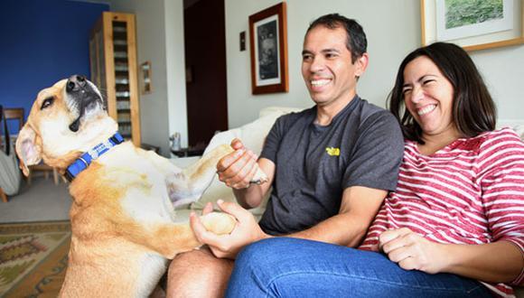 El cariño y atención que le des a tu nuevo perro en sus primeros días será clave para su adaptación. (Foto: Andrea Carrión)