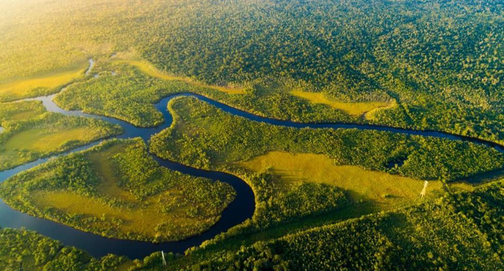 3. Río Amazonas (Perú, Colombia y Brasil). El río más largo. (Foto: Shutterstock)