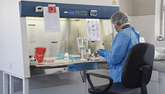 De esta manera se logró determinar cómo se está expandiendo el virus en las diferentes regiones del Perú y cuáles son los cambios o mutaciones que vienen registrando en el coronavirus. (Foto: GEC)