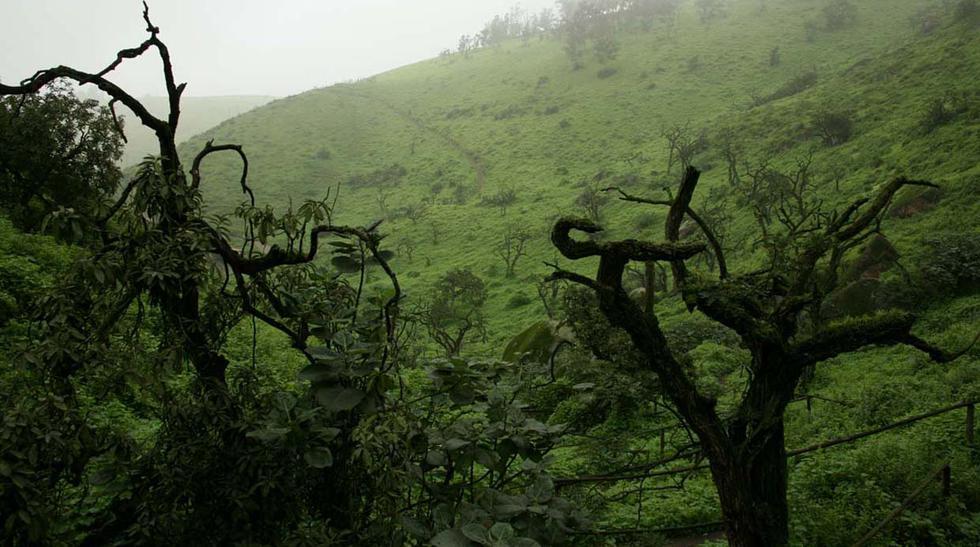 Experiencia única: visita las Áreas Naturales Protegidas - 2