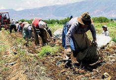 Ministro Montenegro: La meta del sector agropecuario es crecer más de 4,1% este año