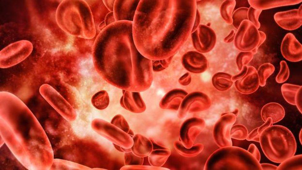 Los glóbulos rojos viajan por tus venas y arterias a unos 2 kilómetros por hora. (Foto: Getty)