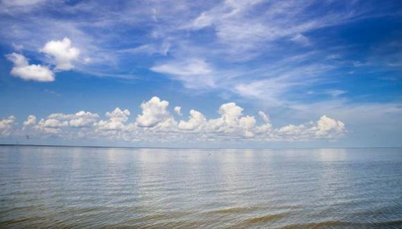 Acidificación del océano afecta el metabolismo de organismos