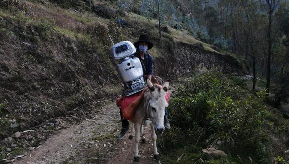 Qipi y el profesor Walter Velásquez recorren a pie o en burro los caseríos del distrito de Colcabamba, en Huancavelica, en busca de sus alumnos para dictarles clase. (Foto: Archivo Personal).