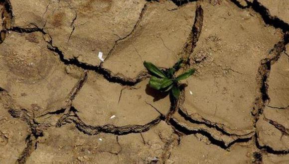 Noviembre del 2016 fue el más seco de los últimos 30 años