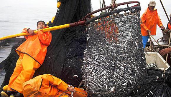 Imarpe recomendó mantener suspendida la pesca de anchoveta
