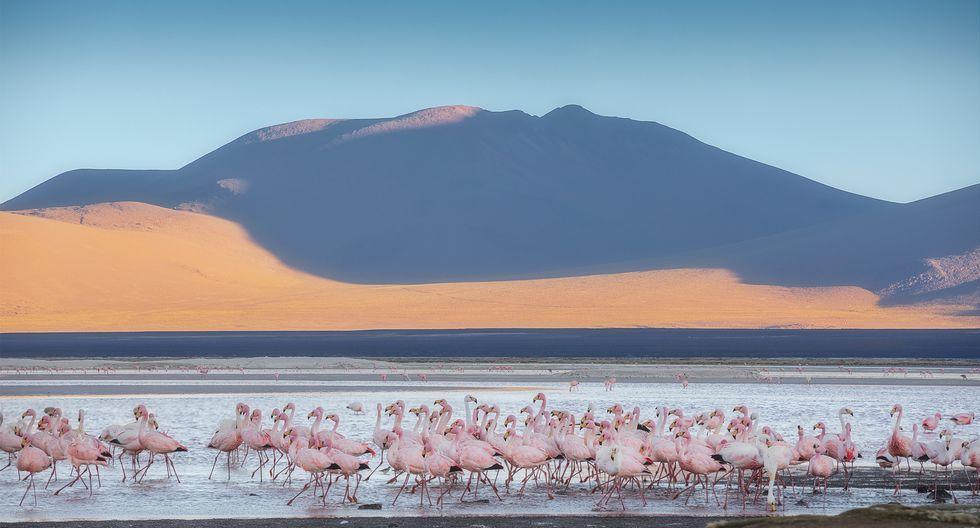 Desde el Salar de Uyuni, Bolivia. FOTOS: Jheison Huerta, archivo personal.