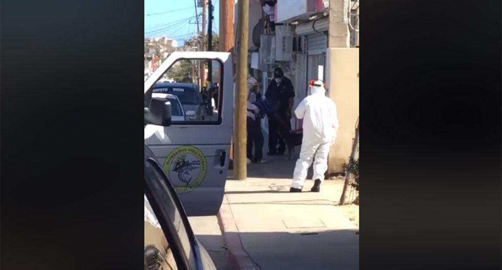 En México, un hombre con COVID-19  se despidió con lágrimas de su mascota. | Foto: Facebook/MetropoliMx