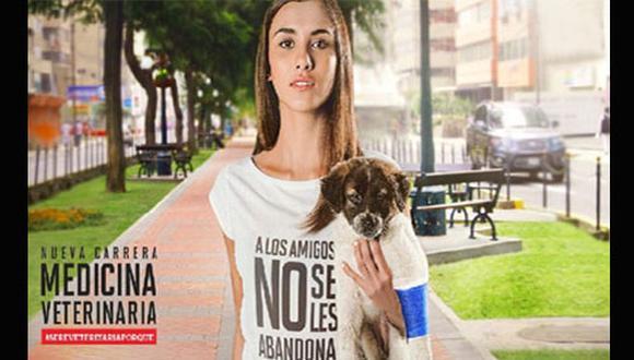 El Perú tiene un serio problema de sobrepoblación de perros y gatos callejeros, pero paralelamente existe una preocupante carencia en el cuidado de nuestras mascotas.