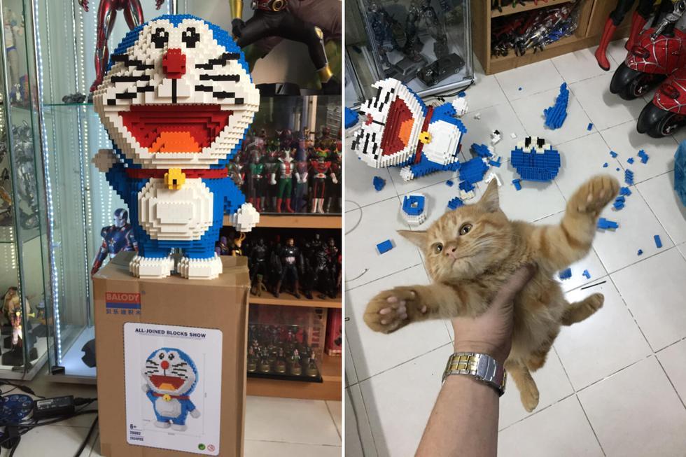 El propietario de la mascota retrató toda la secuencia de la travesura del felino. (Foto: ภูมิมัย พรทอง en Facebook)