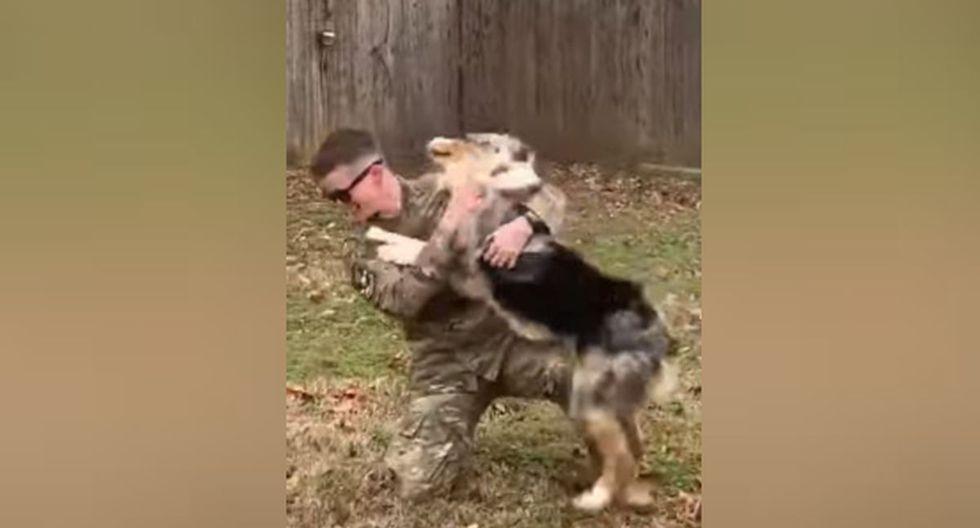 La mascota saltaba hacia ella con el fin de 'abrazarla' y 'besarla'. (YouTube: ViralHog)