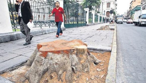 """""""Defensa del árbol"""", por Abelardo Sánchez León"""