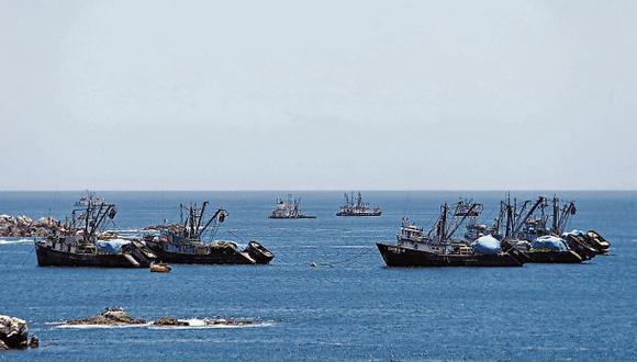 Se ha pescado 26% de la cuota de anchoveta de la temporada