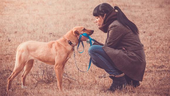 Cinco formas en las que una mascota te enseña a ser mejor mamá