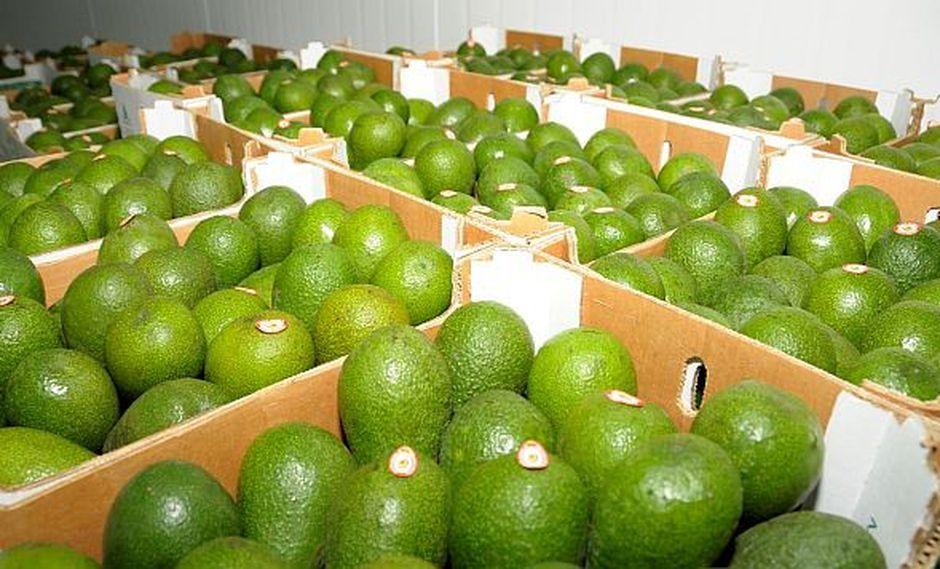 Estados Unidos, Países Bajos, España, Ecuador, Reino Unido y Chile figuran como mercados principales para los productos peruanos. (Foto: GEC)