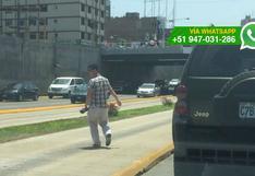 Peatones imprudentes: hombre bajó de auto en plena Vía Expresa