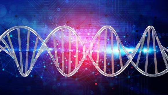 """Qiaomei Fu, investigadora principal, dice que es un """"gran momento"""" para estudiar la genética evolutiva humana porque el desarrollo de la tecnología maximiza la generación y el almacenamiento de datos . (Foto: El Mercurio / GDA)"""