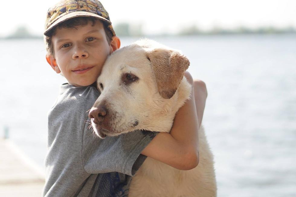No cabe duda que el perro y el niño tiene una relación bastante cercana (Foto: Pixabay/ Referencial)