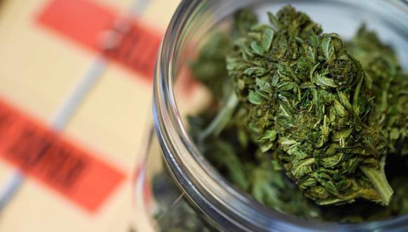Francia | Casi la mitad de todos los adultos franceses ha consumido marihuana en su vida. (AFP)